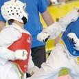In previsione del campionato regionale 2014, il Comitato Regionale Lazio organizza un allenamento per i cadetti A- B da gialla a nera, presso la palestra della A.S.D. TAEKWONDO KARISMA. Data:...