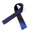 Martedì 1 marzo in segno di lutto tutte le società di Taekwondo del Lazio resteranno chiuse. Abbiamo fatto una corona da parte di tutte le società del Lazio. Funerale Presidente...