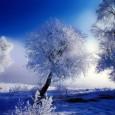 A causa delle eccezionali condizioni meteo previste per Roma e Lazio(si veda il sito delComune di Roma), lo scrivente Comitato ha ritenuto opportunorinviare la gara prevista per il 12 febbraio...